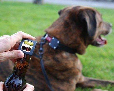 Bark 4 Beer: Always Have A Bottle Opener Handy | Homebrewing in the US | Scoop.it