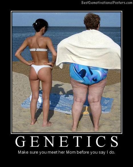 Cena genetskega izvida | Rodoslovje | Scoop.it