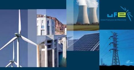 Electricité 2030 : quels choix pour la France ? | Le groupe EDF | Scoop.it