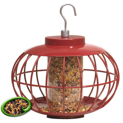 Bird Feeders UK – Seed Feeders at Bird Shop UK :: Popoutz Seed Feeder, EGG Seed Feeder | Bird Accessories | Scoop.it