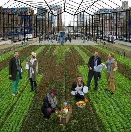 Urban Greenhouse in Rotterdam to be new city icon | Urban rurality | Scoop.it