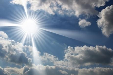 Le soleil disparait... les cigales aussi | EntomoNews | Scoop.it