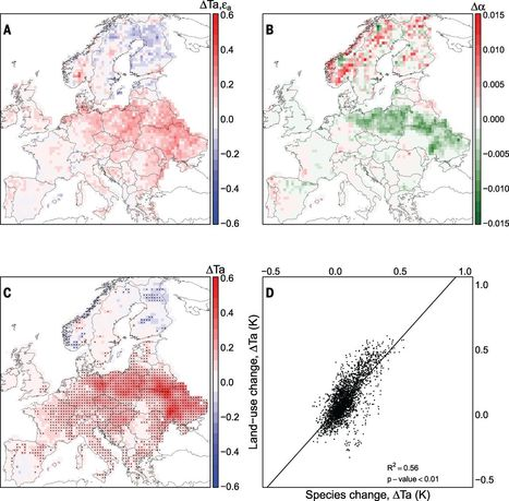 Europe's forest management did not mitigate climate warming | MycorWeb Plant-Microbe Interactions | Scoop.it