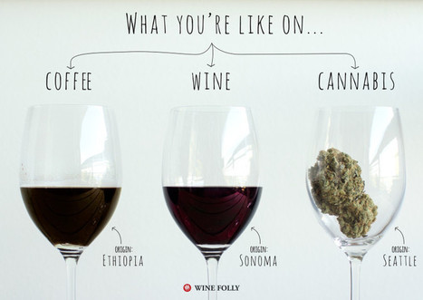 Your Brain on #Coffee #Wine and Cannabis | Vitabella Wine Daily Gossip | Scoop.it
