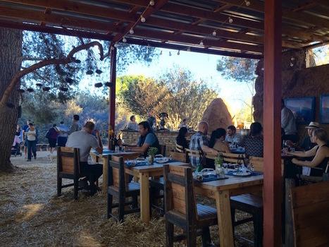 Where to Eat, Drink & Stay in Baja California's Valle de Guadalupe | Luxury Living International Magazine | Baja California | Scoop.it