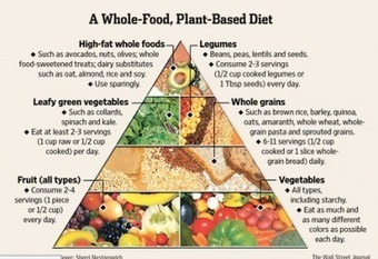 Plant-Based Diet For First Time Ever Recommended In US Federal Guidelines - The Speaker | Plant Based Diet | Scoop.it
