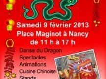 Nouvel An Chinois 2013 Année du Serpent - par LihuaNancy | Nouvel An Chinois 2013 à Nancy Année du Serpent le 9 février de 11h à 17h place Maginot à Nancy | Scoop.it