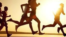 Top 10 Free: Free Exercise Websites May 26th 2014 - Top 10 Free.com | Top 10 Free | Scoop.it
