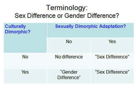 """Sex Difference"" vs ""Gender Difference?"" Oh, I'm so confused! 