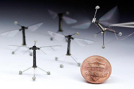 MIT Researchers Give The Robot Bee a Major Upgrade | Education Technology | Scoop.it