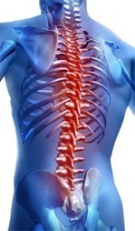 Spinal Cord Meeting | Spinal Injuries and Paralysis News and Information | Scoop.it