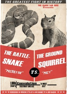 Squirrel-Snake Face Off! | #SciFund | Scoop.it