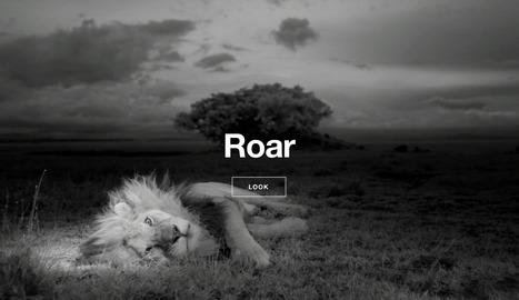 The Serengeti Lion | Interactive & Immersive Journalism | Scoop.it