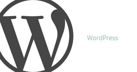 WordPress 4.2.4 Security and Maintenance Release Now Available | Free & Premium WordPress Themes | Scoop.it