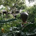 Matt Drudge Expands Wooded South Florida Compound to 10 Acres ... | Real Estate in Florida | Scoop.it