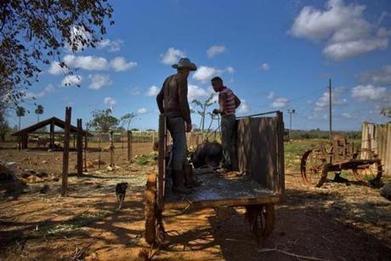 Is Cuba the future of farming? | Questions de développement ... | Scoop.it