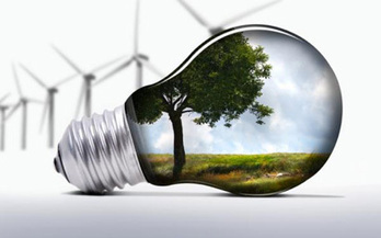 Institutions raise exposure to renewables | Timberland Investment | Scoop.it