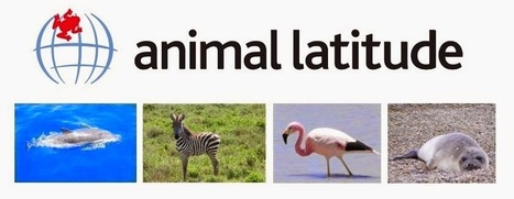 animal latitude: Primates | ANIMAL LATITUDE NEWS | Scoop.it