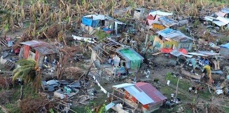 Après le typhon, l'urgence de retrouver un toit   La revue de presse des élèves de 2nde-Semaine B   Scoop.it