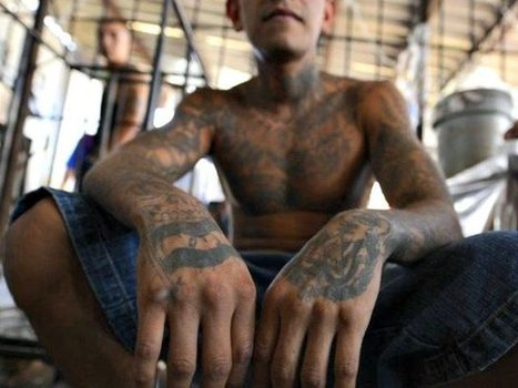 Obama's ICE Frees 19,000 Illegal Immigrant Criminals To Streets in 2015, Including Murderers, Rapists - Breitbart | Criminal Justice in America | Scoop.it