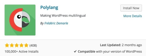 Multilingual WordPress Websites with Polylang | language and technology | Scoop.it