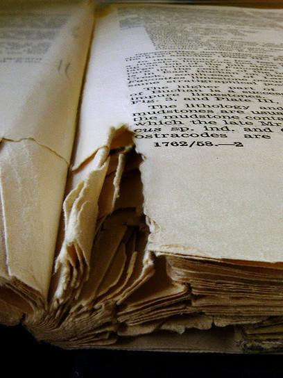 La disparition du livre n'est pas pour demain – et celle de l'édition ? | L'édition numérique pour les pros | Scoop.it