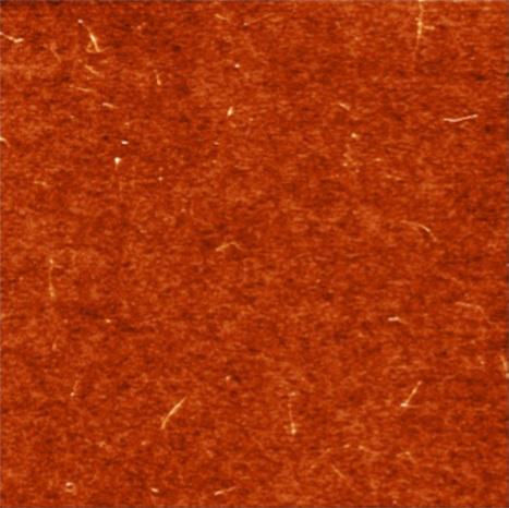 Des cellules solaires pour exploiter la lumière infrarouge | Les promesses des nanotechnologies | Scoop.it