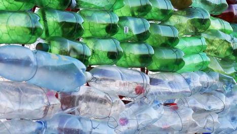 Descubren una nueva bacteria que ha aprendido a alimentarse exclusivamente de plástico | Biología de Cosas de Ciencias | Scoop.it