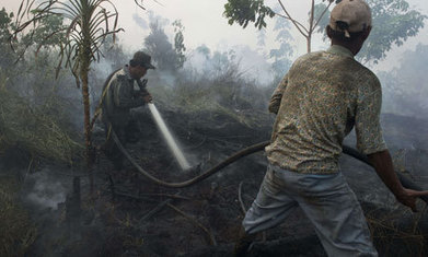 Singapore tells Indonesia to share forest fire maps | Environmental Management in Indonesia | Scoop.it
