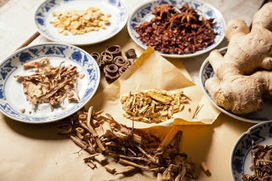 treatment for kidney disease: Advantage of Micro-Chinese Medicine Osmotherapy Compared with Traditioanl Chinese Medicine Theraphy | kidney disease | Scoop.it