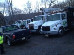Get reliable tree services by calling JP Tree Works Inc today | JP Tree Works Inc | Scoop.it