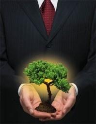 De la Responsabilidad Social hacia el Desarrollo Sustentable | Sostenibilidad Sustentabilidad RSE | Scoop.it