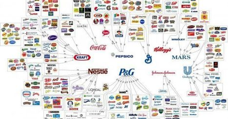 10 Corporations Control Almost Everything You Buy — This Chart Shows How | Manaturo | Scoop.it