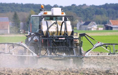 Seulement 0,3% des pesticides atteignent leur cible - leJDD.fr   culture hors-sol   Scoop.it