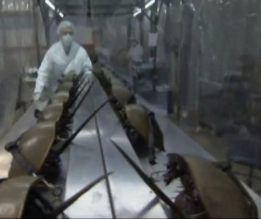 How horseshoe crabs may have saved your life. | Titan Explores | Scoop.it