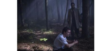 Cannes 2015 : ce sera la Palme de la surprise - le Parisien | Actu Cinéma | Scoop.it
