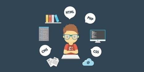 Make Quick And Easy CSS Tweaks On Your WordPress Site | Free & Premium WordPress Themes | Scoop.it