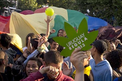 Uruguay Violating Treaties By Legalizing Marijuana, UN Agency Says - U.S. News & World Report | Waabizhishi News | Scoop.it