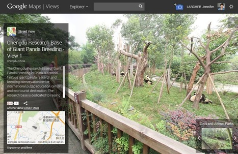 Street View : Google vous invite à voyager à travers les zoos du monde | Digital news | Scoop.it