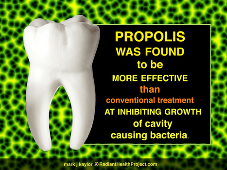Propolis Prevents Cavities Better | Health from the Hive | Scoop.it