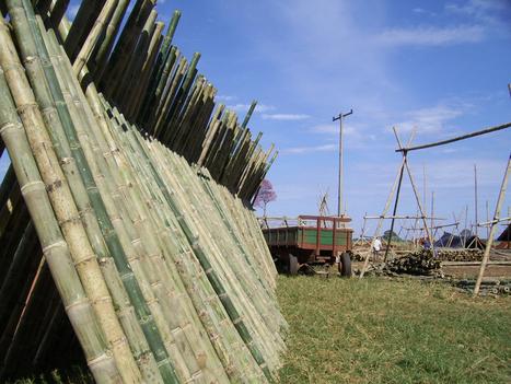 Tratamentos Naturais Para Bambu - Ecovila da Montanha | Ecovila | Scoop.it