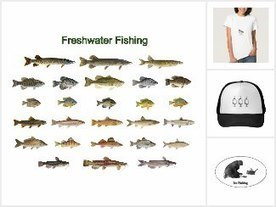Atlas of Inland Fishes of New York Vol. 7 – Freshwater Fishing News | Freshwater Fishing | Scoop.it