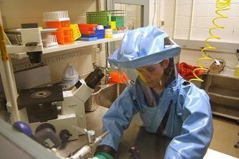 La stratégie du virus Ébola : bloquer la réponse immunitaire | Institut Pasteur de Tunis-معهد باستور تونس | Scoop.it
