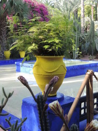 Marrakesh & the Majorelle Gardins. | Middle East Travels | Scoop.it