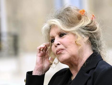 Lion Cecil : Brigitte Bardot demande une punition exemplaire | Actualités écologie | Scoop.it