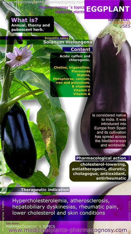 10 Health Benefits of Eggplant | Nutrition Facts | Actualité Nutrition | Scoop.it