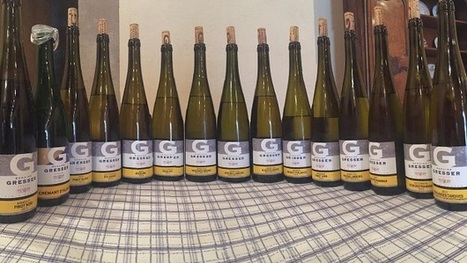 Alsace: The 2014s and Late-Release 2013s | Vitabella Wine Daily Gossip | Scoop.it