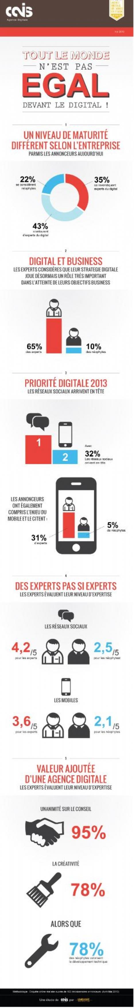 [Infographie] Les réseaux sociaux : priorité digitale des annonceurs en 2013   Social Media Curation par Mon Habitat Web   Scoop.it