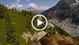 Eagle POV on Devour.com | Mon youtube | Scoop.it