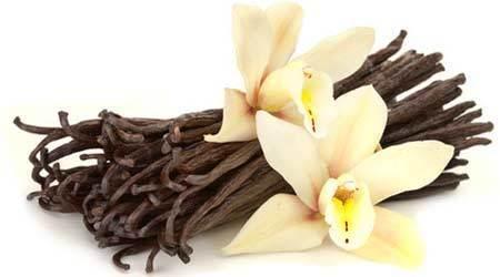 Buy Wide Range of Vanilla Oil Online at Wholesale Prices | Essential Oils | Scoop.it